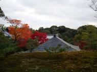 Asisbiz Kinkaku ji Temple 13 Zen Gardens Kyoto Japan Nov 2009 01