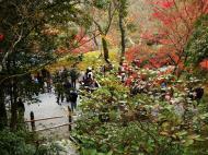 Asisbiz Kinkaku ji Temple 13 Zen Gardens Kyoto Japan Nov 2009 02