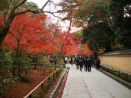 Asisbiz Kinkaku ji Temple 18 Zen Gardens Kyoto Japan Nov 2009 06