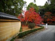 Asisbiz Kinkaku ji Temple 18 Zen Gardens Kyoto Japan Nov 2009 09
