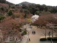 Asisbiz Kiyomizu dera Hon do Kyoto terrace views during cherry blossom season 2010 01