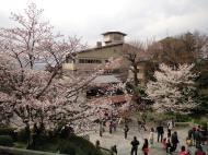 Asisbiz Kiyomizu dera entrance facing back towards Kyoto during cherry blossom season 02