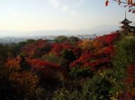Asisbiz Maple trees Autumn leaves Kiyomizu dera Kyoto Japan Nov 2009 048