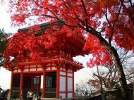 Asisbiz Deva gate Otowa san Kiyomizu dera Kyoto Nov 2009 02