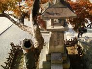 Asisbiz Otowa san Kiyomizu dera Buddha shrine Kyoto Nov 2009 06
