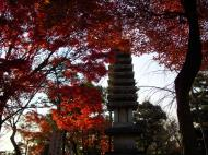 Asisbiz Otowa san Kiyomizu dera Buddha shrine Kyoto Nov 2009 20