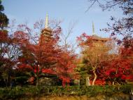 Asisbiz Otowa san Kiyomizu dera Buddha shrine Kyoto Nov 2009 23