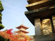 Asisbiz Otowa san Kiyomizu dera Buddha shrine Kyoto Nov 2009 26