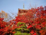 Asisbiz Otowa san Kiyomizu dera Pagoda Kyoto Nov 2009 07