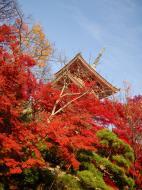 Asisbiz Otowa san Kiyomizu dera Pagoda Kyoto Nov 2009 08