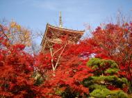 Asisbiz Otowa san Kiyomizu dera Pagoda Kyoto Nov 2009 09