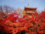 Asisbiz Otowa san Kiyomizu dera Pagoda Kyoto Nov 2009 10