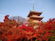 Asisbiz Otowa san Kiyomizu dera Pagoda Kyoto Nov 2009 11