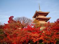 Asisbiz Otowa san Kiyomizu dera Pagoda Kyoto Nov 2009 12
