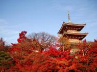 Asisbiz Otowa san Kiyomizu dera Pagoda Kyoto Nov 2009 13