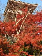 Asisbiz Otowa san Kiyomizu dera Pagoda Kyoto Nov 2009 22