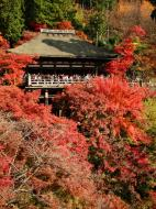 Asisbiz Otowa san Kiyomizu dera Prayer walls Kyoto Nov 2009 09
