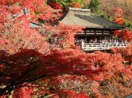 Asisbiz Otowa san Kiyomizu dera Prayer walls Kyoto Nov 2009 12