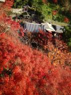 Asisbiz Otowa san Kiyomizu dera Temple Kyoto Japan Nov 2009 02