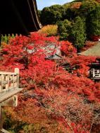 Asisbiz Otowa san Kiyomizu dera Temple Kyoto Japan Nov 2009 04