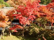 Asisbiz Otowa san Kiyomizu dera Temple Kyoto Japan Nov 2009 08