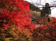 Asisbiz Otowa san Kiyomizu dera Temple Kyoto Japan Nov 2009 09