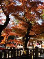 Asisbiz Otowa san Kiyomizu dera Temple Kyoto Japan Nov 2009 13