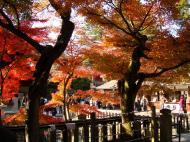 Asisbiz Otowa san Kiyomizu dera Temple Kyoto Japan Nov 2009 14