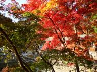 Asisbiz Otowa san Kiyomizu dera Temple Kyoto Japan Nov 2009 15
