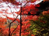 Asisbiz Otowa san Kiyomizu dera Temple Kyoto Japan Nov 2009 16