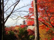 Asisbiz Otowa san Kiyomizu dera Temple Kyoto Japan Nov 2009 31