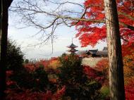 Asisbiz Otowa san Kiyomizu dera Temple Kyoto Japan Nov 2009 35
