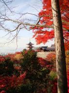 Asisbiz Otowa san Kiyomizu dera Temple Kyoto Japan Nov 2009 36