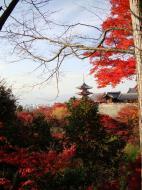 Asisbiz Otowa san Kiyomizu dera Temple Kyoto Japan Nov 2009 37