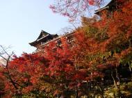 Asisbiz Otowa san Kiyomizu dera Temple Kyoto Japan Nov 2009 42