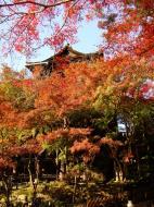 Asisbiz Otowa san Kiyomizu dera Temple Kyoto Japan Nov 2009 43