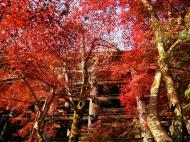 Asisbiz Otowa san Kiyomizu dera Temple Kyoto Japan Nov 2009 45