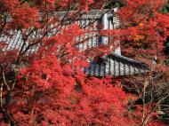 Asisbiz Otowa san Kiyomizu dera Temple Kyoto Japan Nov 2009 50