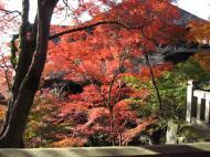 Asisbiz Otowa san Kiyomizu dera Temple Kyoto Japan Nov 2009 52