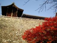 Asisbiz Otowa san Kiyomizu dera Temple wall Kyoto Japan Nov 2009 04