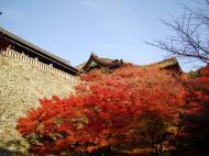 Asisbiz Otowa san Kiyomizu dera Temple wall Kyoto Japan Nov 2009 05