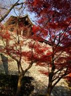 Asisbiz Otowa san Kiyomizu dera Temple wall Kyoto Japan Nov 2009 06
