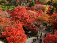 Asisbiz Otowa san Kiyomizu dera garden walkways Kyoto Nov 2009 02