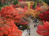 Asisbiz Otowa san Kiyomizu dera garden walkways Kyoto Nov 2009 03