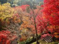 Asisbiz Otowa san Kiyomizu dera garden walkways Kyoto Nov 2009 06