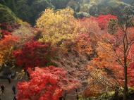 Asisbiz Otowa san Kiyomizu dera garden walkways Kyoto Nov 2009 08