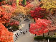 Asisbiz Otowa san Kiyomizu dera garden walkways Kyoto Nov 2009 09