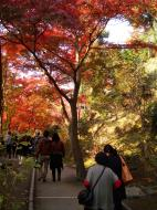 Asisbiz Otowa san Kiyomizu dera garden walkways Kyoto Nov 2009 16