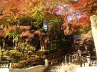 Asisbiz Otowa san Kiyomizu dera garden walkways Kyoto Nov 2009 19
