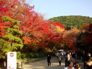 Asisbiz Otowa san Kiyomizu dera garden walkways Kyoto Nov 2009 22